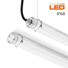 TTP LED